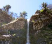 ZMC_Waterfall2011_StevenHarper_600pxcrop