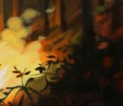 littlefireartspan_HadleyNorthrop_crop-600px