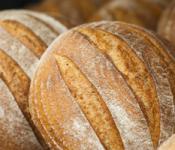 bread_banner600px