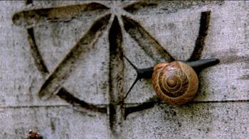 Snail_x350