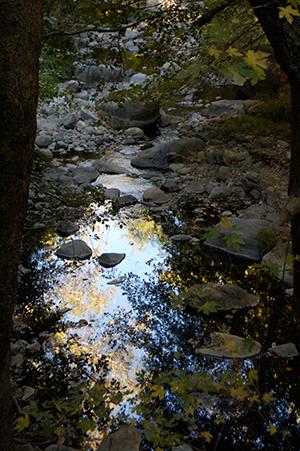 Tassajara-creek--by-Zohra-Kalinkowitz