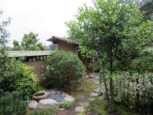 GGF Tea Garden 2