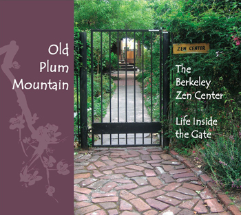 Old Plum Mountain graphic
