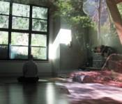 Meditation Reflection