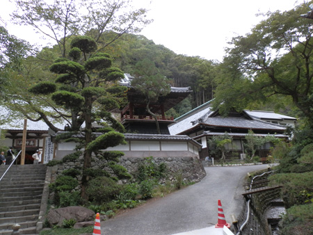 Rinso-in