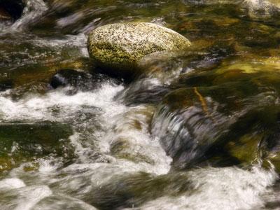Creek Rushing by David Silva