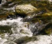 Water Rushing by David Silva
