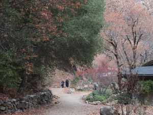 Tassajara path (Photo: Shundo David Haye)