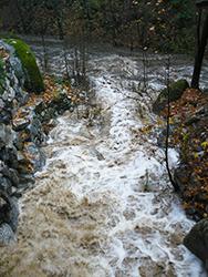 Creeks-roiling-shundo-crop