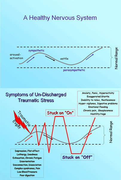 When not processed properly, trauma can result in a recurring pattern of reactions to stress that run outside of the normal range experienced in a healthy nervous system. Jane and Patricia explain more in the workshop about these graphs from the Somatic Experiencing Trauma Institute�s website. [http://www.traumahealing.com/somatic-experiencing/]