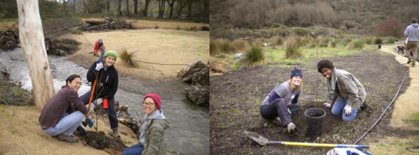 creek_work_volunteerscombo_121414_x800
