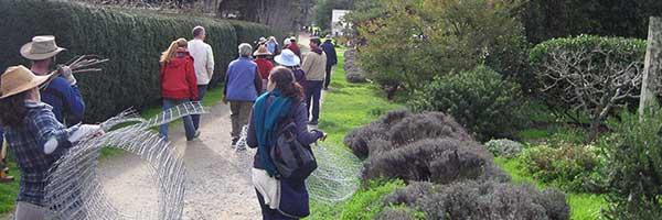Arbor Day at Green Gulch Farm