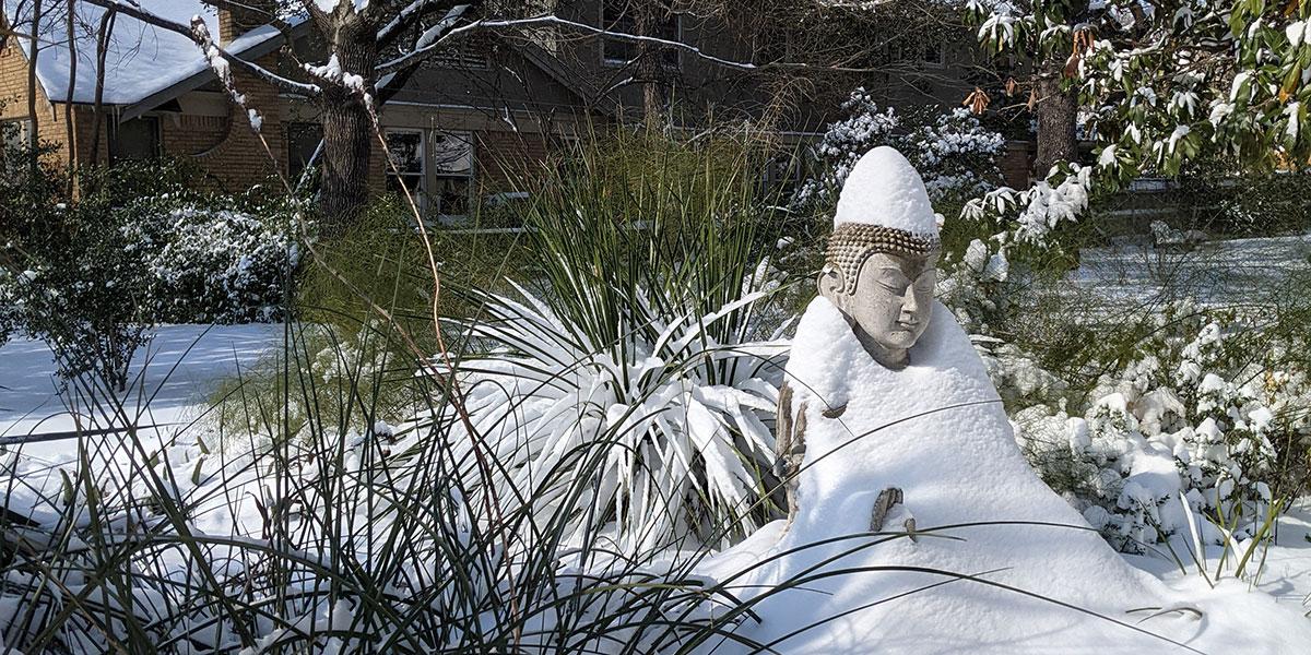 Winter Storms Challenge Texas Zen Centers