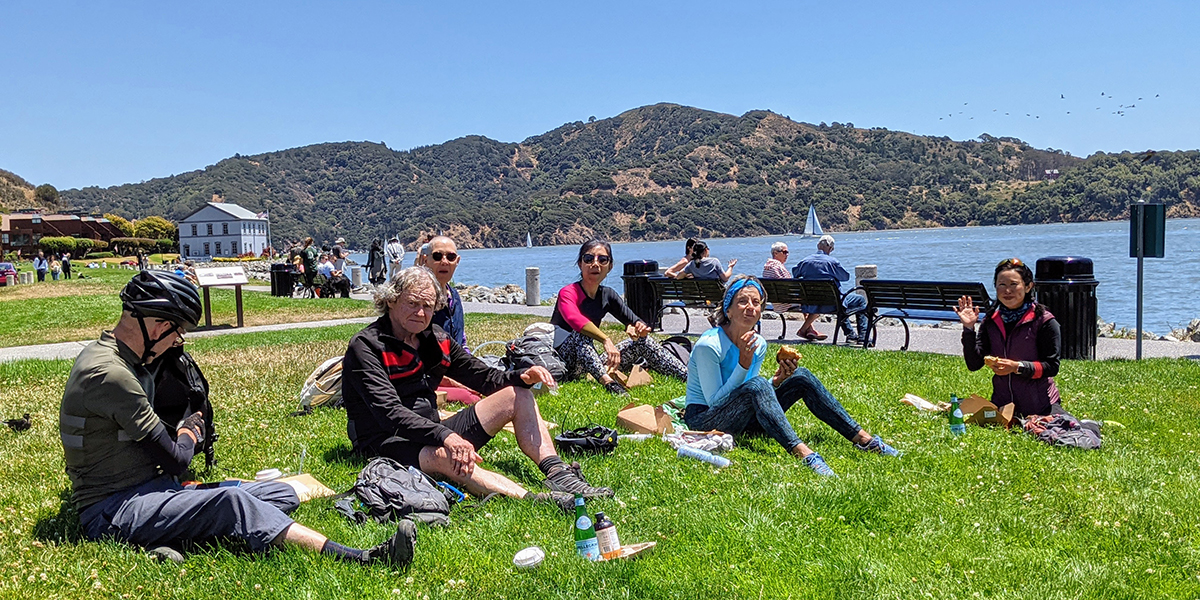 Group picnicking on lawn